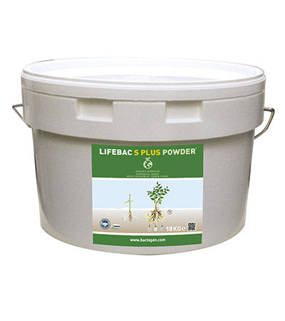 LIFEBAC S PLUS POWDER