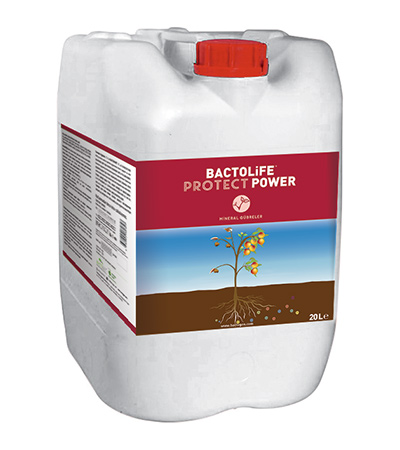 BACTOLIFE PROTECT POWER