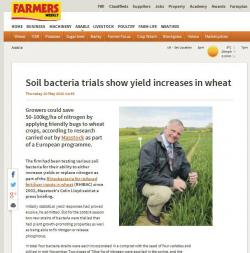 Soil bacteria trials show yield increases in wheat