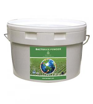 BACTORICE POWDER
